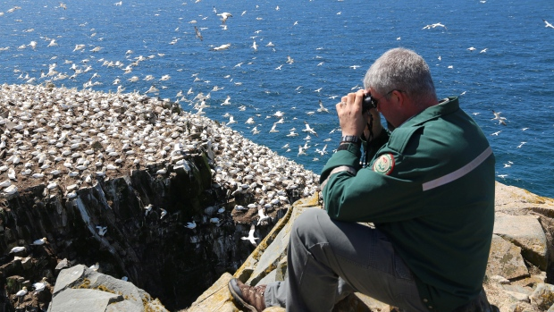 travel-log-seabird-nl-reserve-20150525